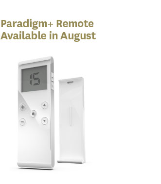 Paradigm+ Remote 