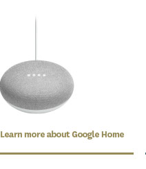 Learn more about Google Home