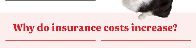 Why do insurance costs increase?