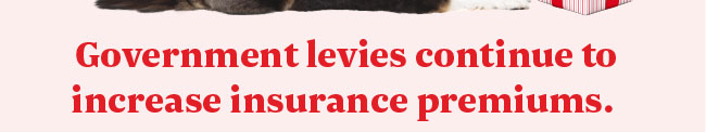 Government levies continue to increase insurance premiums.
